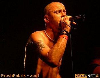 FreshFabrik - Zed!